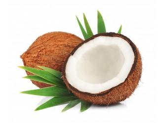 Выбираем наполнитель: Кокосовая койра или Эко-кокос?
